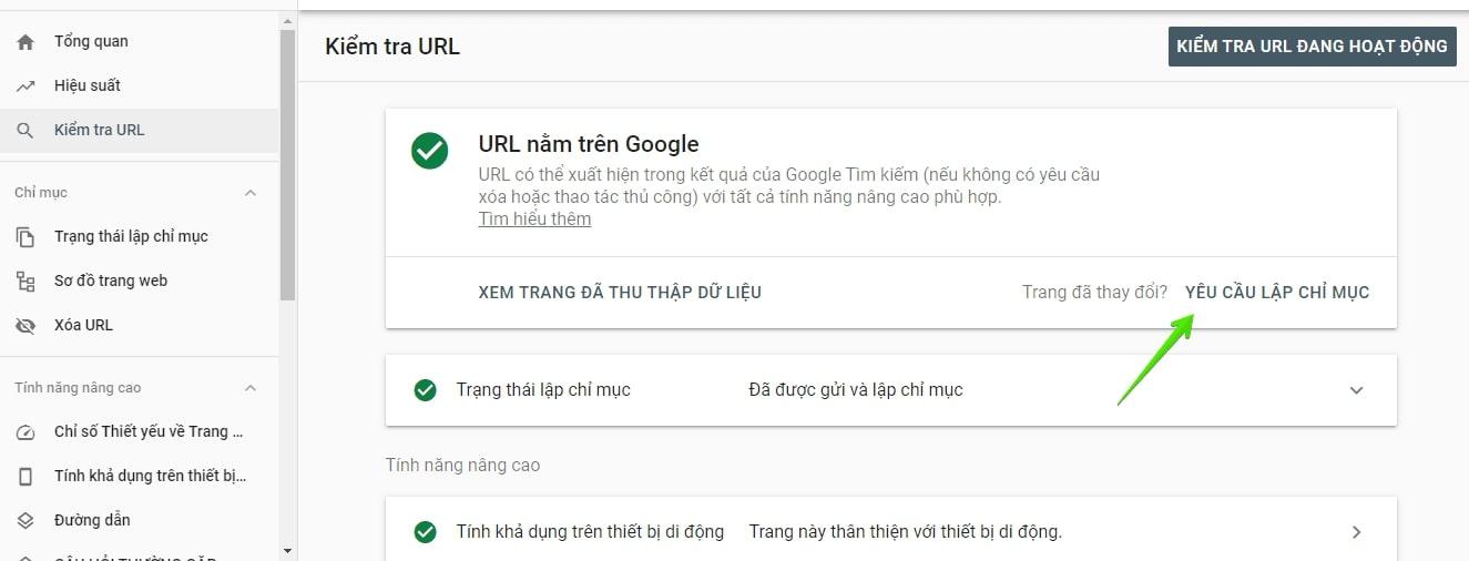 kiểm tra URL